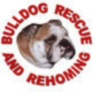 Bulldog Rescue Rehoming Trust