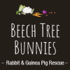 Beeach Tree Bunnies